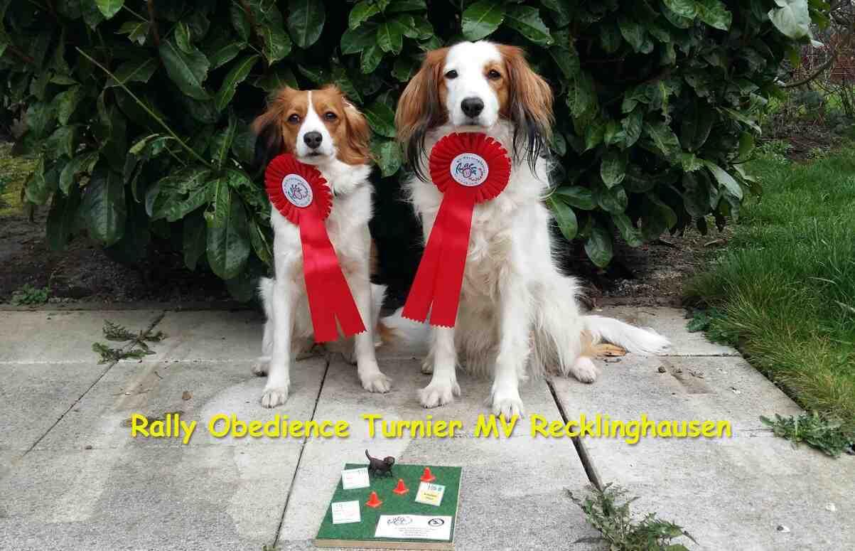 Photo of Rally-Obedience Saison erfolgreich eröffnet!!!