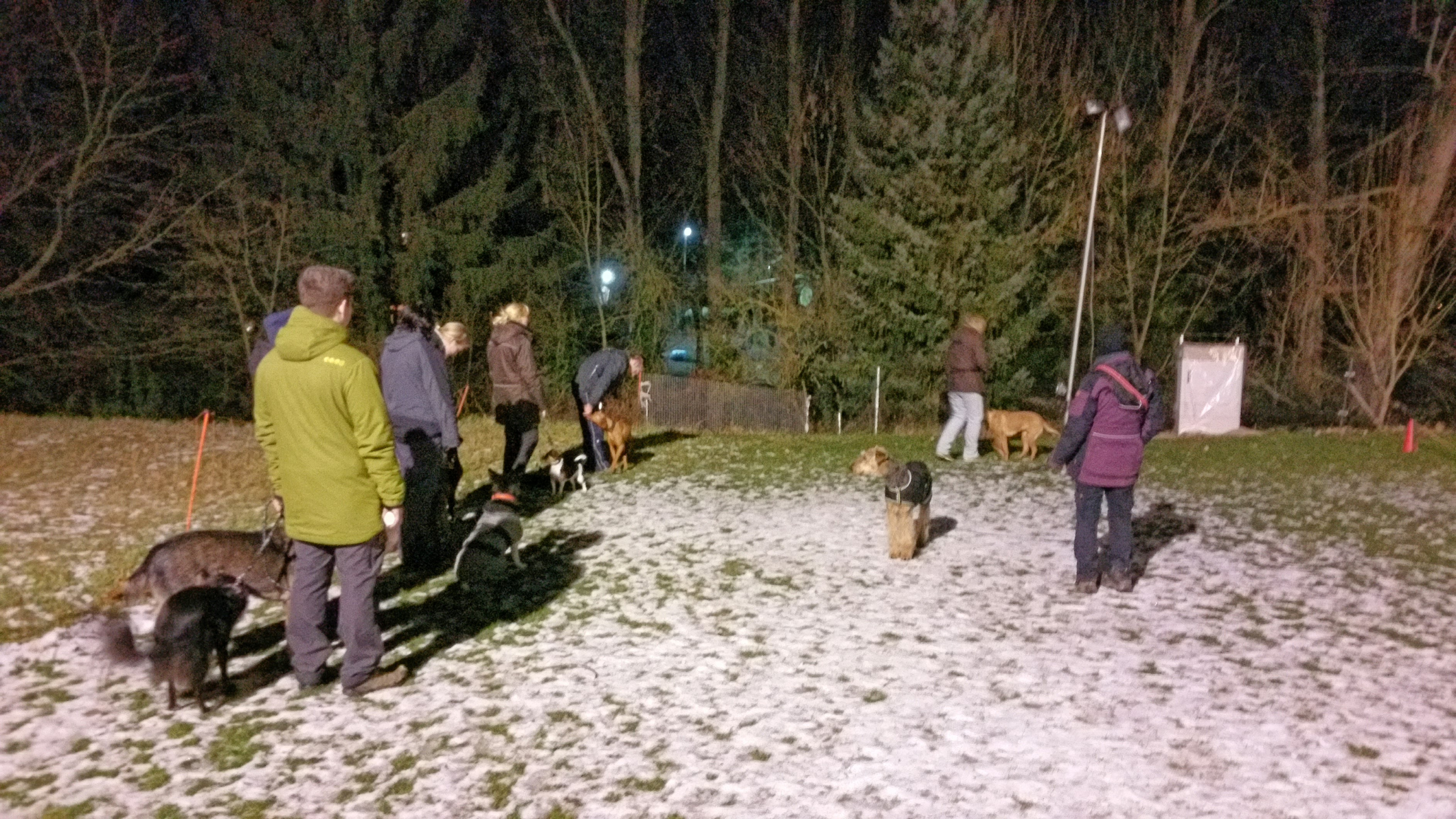 Photo of THS-Wintertraining mit dem Schweinehund