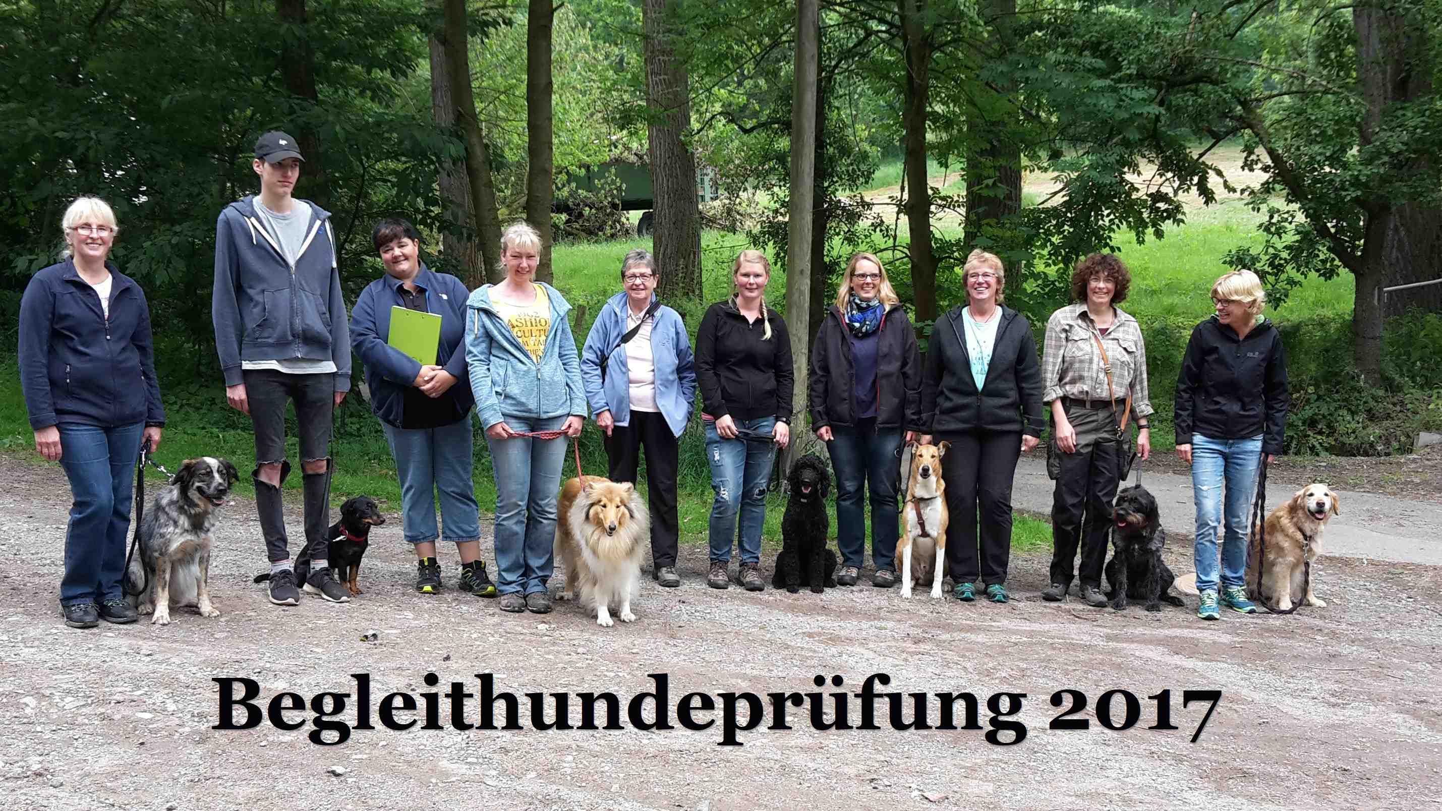 Photo of Begleithund-Prüfung am 17. Juni 2017 beim HSV Menden-Dahlsen