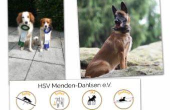 """Photo of """" Obedience Prüfung auf zwei Ringe beim DVG MV Obercastrop """""""